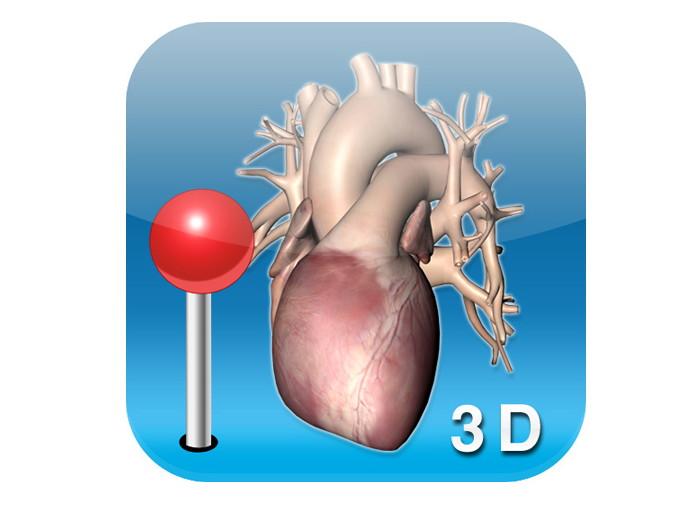 Irish Developer Releases First 3d Human Anatomy Ipad App Life