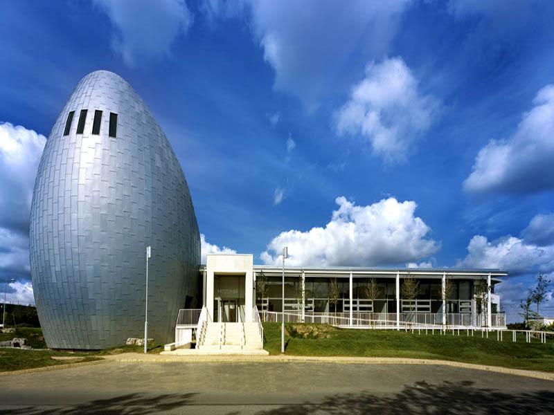 ryan-academy