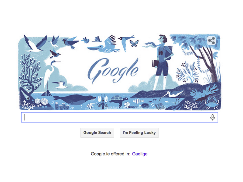 Rachel Louise Carson's 107th birthday is immersed in marine wildlife Google Doodle