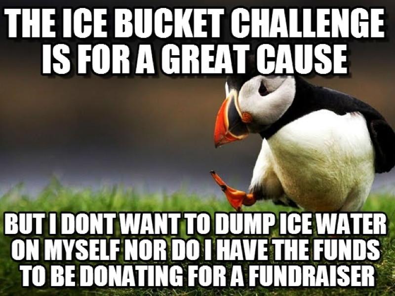 Ice bucket challenge inspires memes