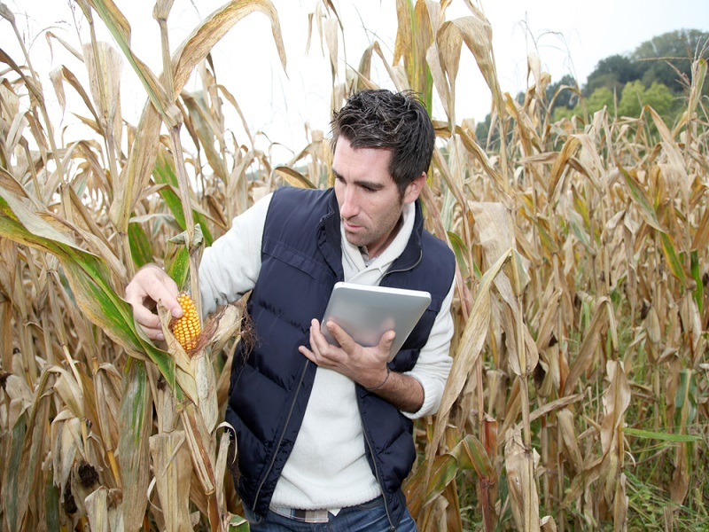 €4m smart agriculture app start-up fund launched