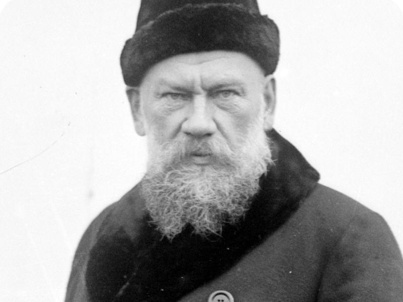 Interactive Google Doodle celebrates Russian novelist Leo Tolstoy