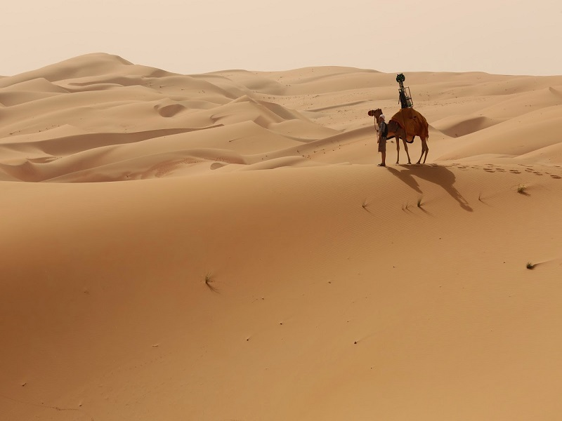 Google hires camel to record desert for Google Maps