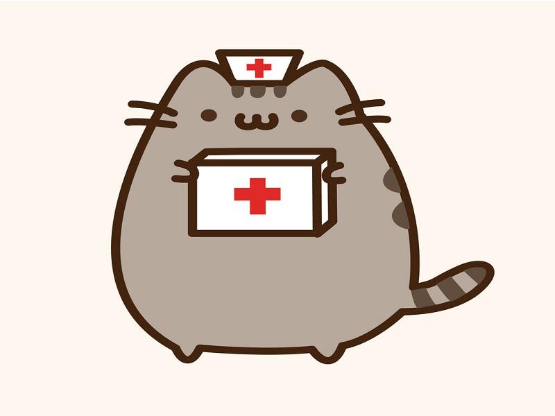 Gigglebit: Pusheen cat's chemistry safety tips