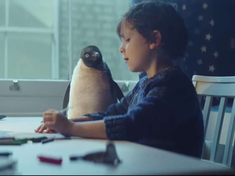 Viral videos of the week: Monty the Penguin, Russell Brand and Martin Shanahan