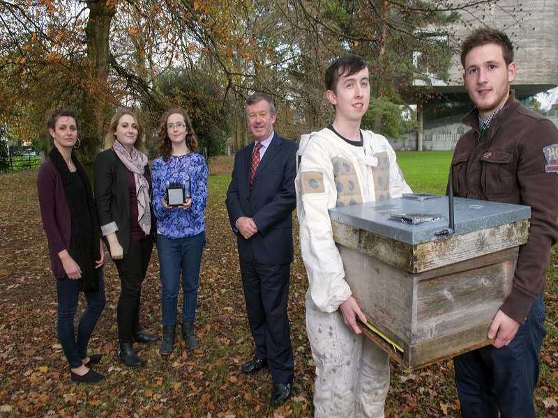 UCC students win global prize for un-bee-lievable tech
