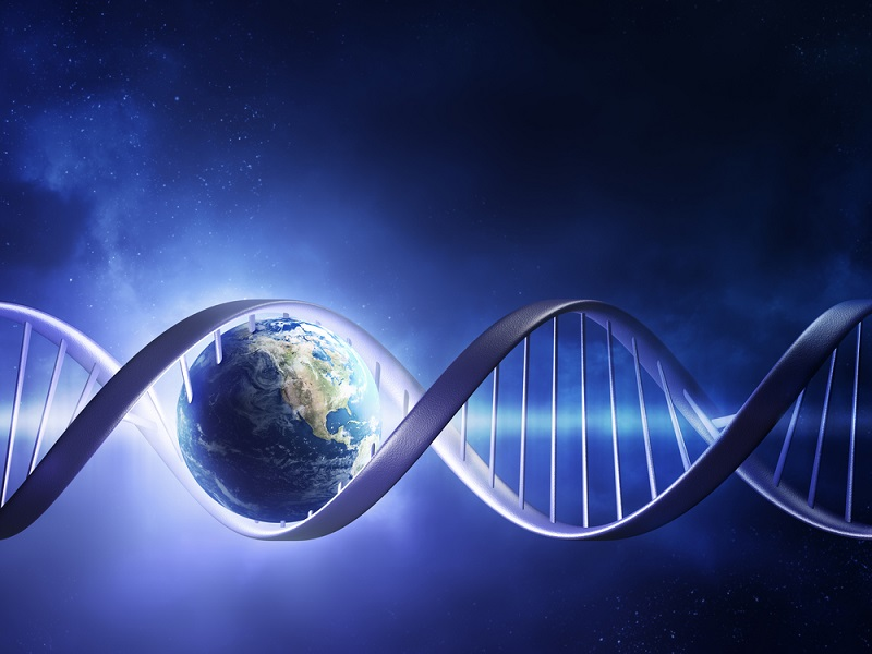 DNA surviving atmospheric descent gives hope to 'panspermia' theory
