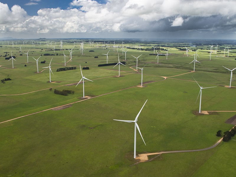Kenya gives go-ahead for Africa's largest wind farm