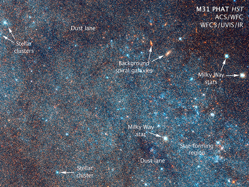 Gigglebit: Andromeda Galaxy in all its glorious, detailed, star-spangled beauty