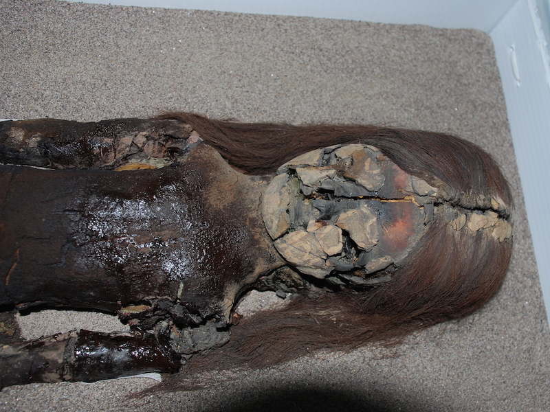 7,000-year-old Chilean mummies, climate change's latest victims