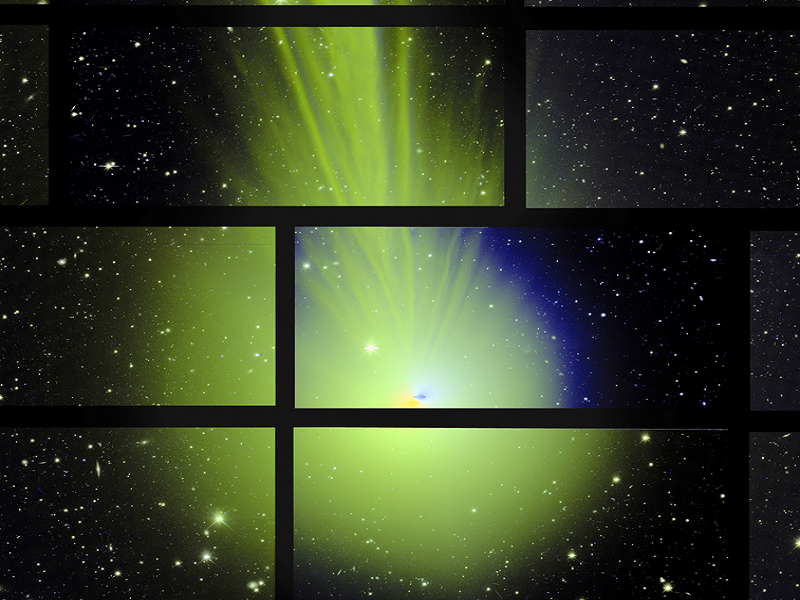 Accidental 'photobomb' of comet Lovejoy is a 'joy' to behold