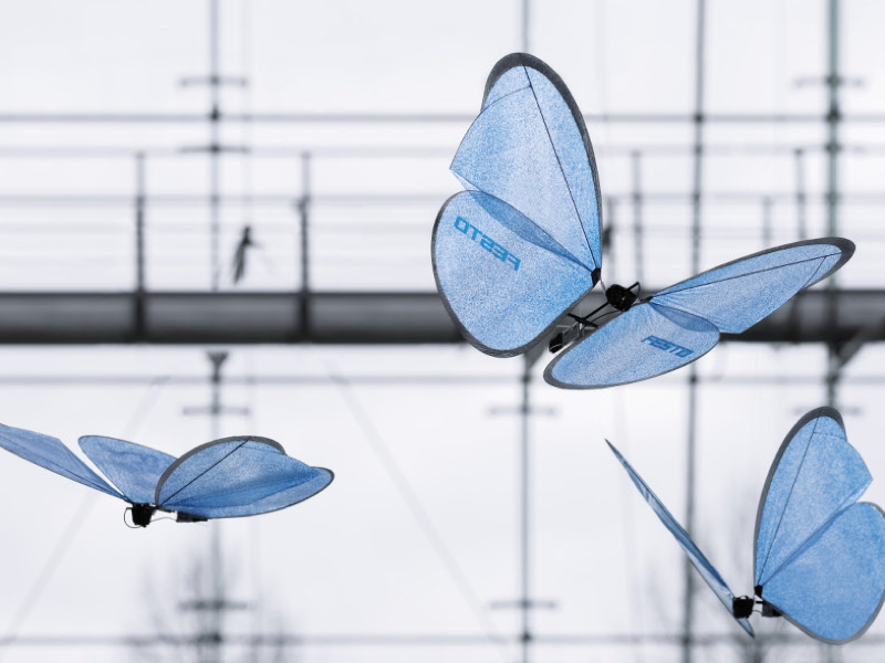 Meet the robot insects that fly, work together and catch objects like chameleons