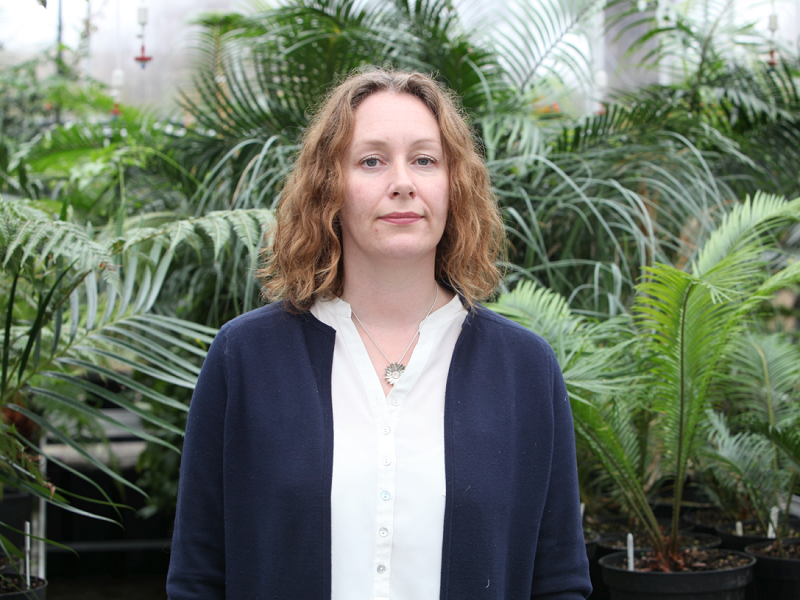 'The only organism that can curb climate change is us' – Prof Jennifer McElwain, UCD