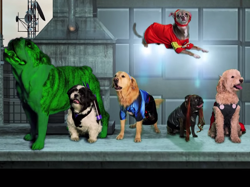 Viral videos of the week: April Fools' Day bonanza and cute animals take over