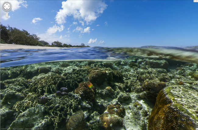 Image from Lady Elliott Island, Great Barrier Reef, Australia (Google Street View)