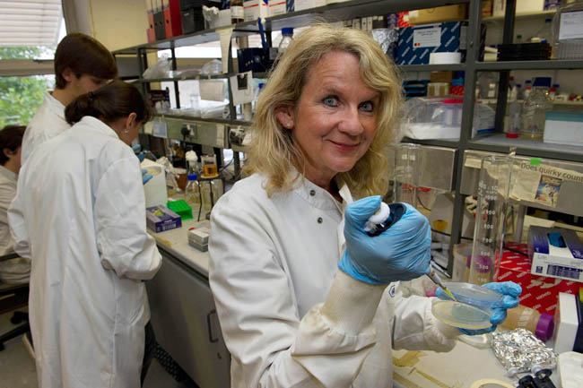 Gene-replacement therapy being pioneered at TCD