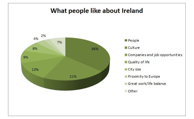 Make IT in Ireland survey report