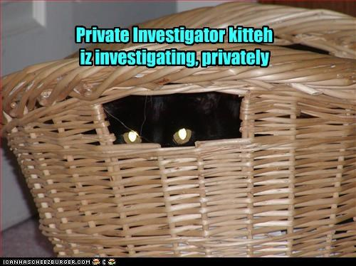 Private investigator meme