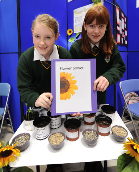 Lauren Elliffe Smith and Natasha Roche from Ashton Secondary School, Cork, pictured with their project 'Looking at how soil types and plant food affect plant growth' at last year's SciFest at CIT