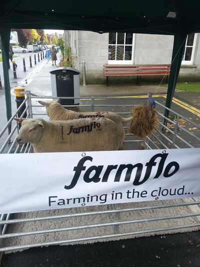 Gareth and Jason Devenney caused a stir at the 2012 Dublin Web Summit when they decided to market Farmflo using branded sheep in a pen outside of the RDS building