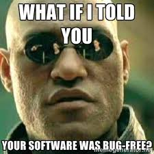 Software developer meme