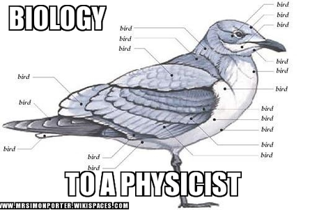 Physicist meme
