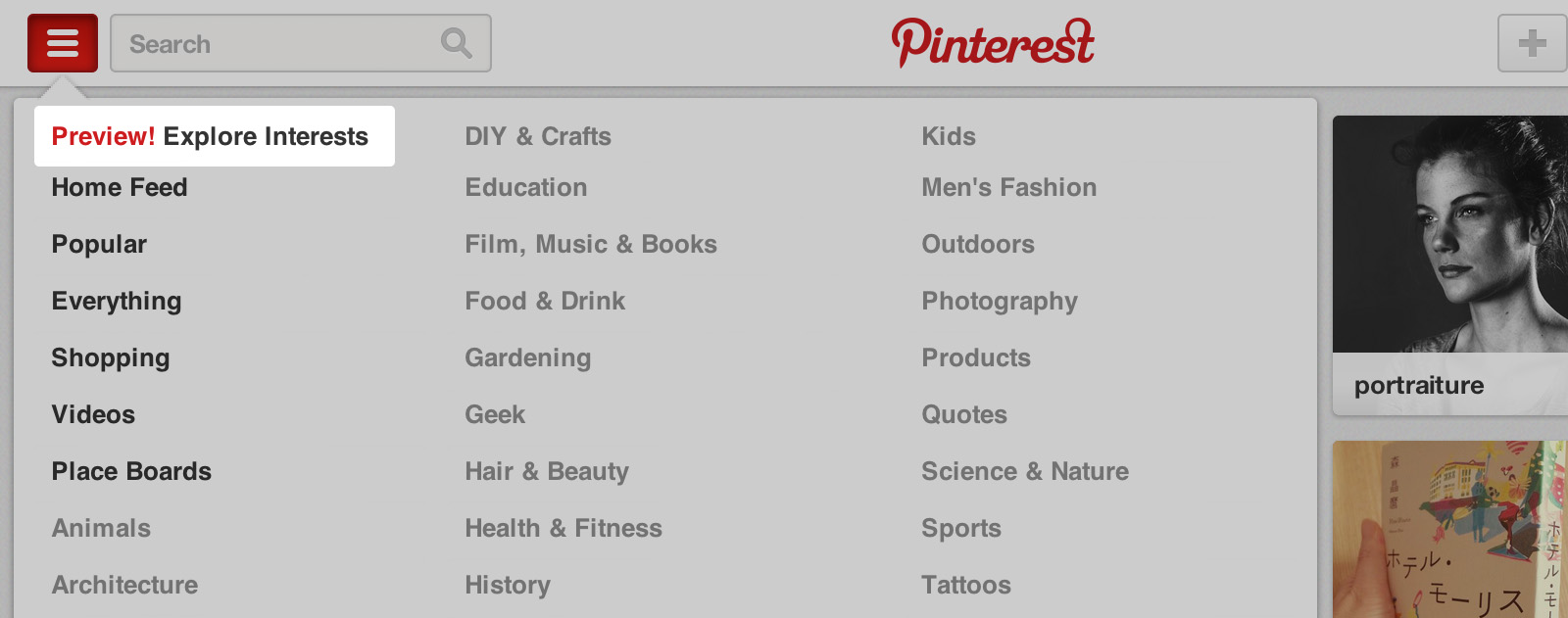 Pinterest preview