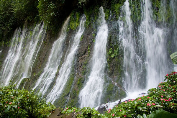 Juayua waterfalls in El Salvador. Image via Shutterstock   http://www.shutterstock.com/cat.mhtml?lang=en&search_source=search_form&search_tracking_id=E34opqIoLYA9gobeB-unUQ&version=llv1&anyorall=all&safesearch=1&searchterm=El+Salvador&search_group=&orient=&search_cat=&searchtermx=&photographer_name=&people_gender=&people_age=&people_ethnicity=&people_number=&commercial_ok=&color=&show_color_wheel=1#id=3086578&src=AYahgOr5e333oF4w50TaNQ-1-7