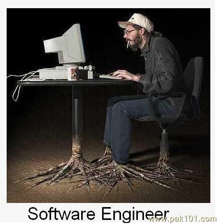 Software engineer meme