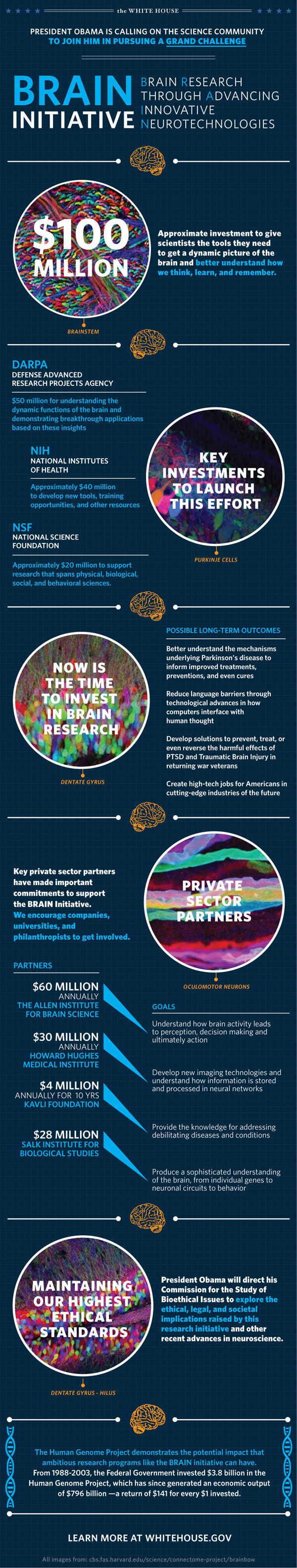 BRAIn research initiative
