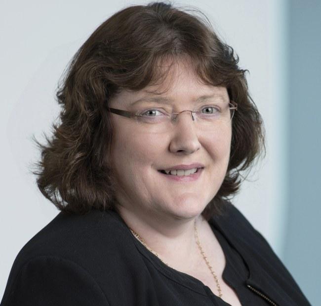 Ann Kelleher, Intel