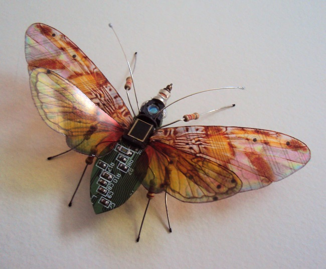 Circuit board moth