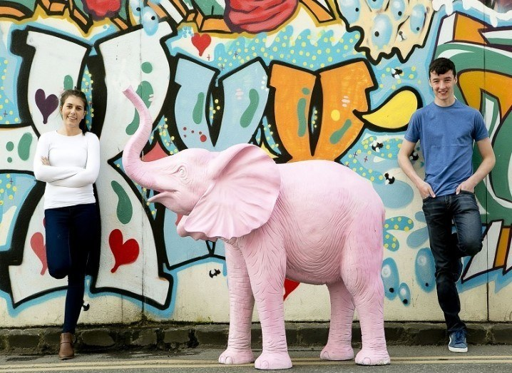 Eimear Murphy and Ian O' Sullivan from Coláiste Treasa in Cork with the pink elephant at ther launch of 2016 BTYSTE