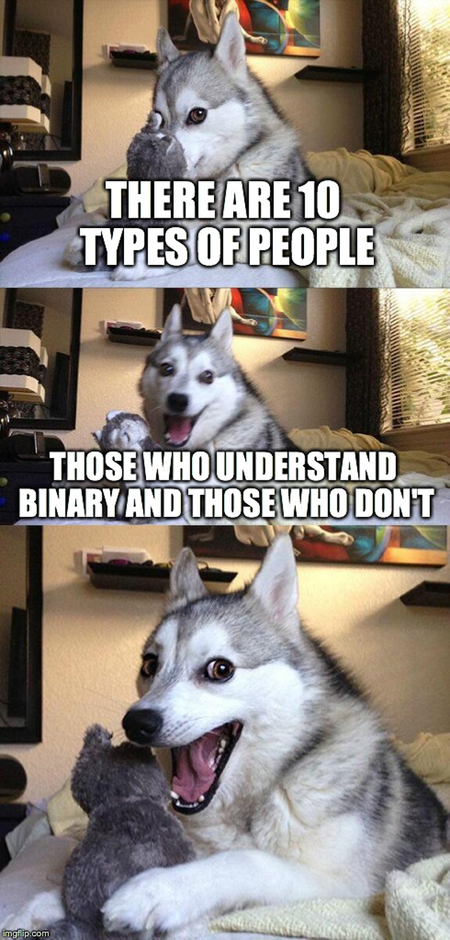 Bad joke dog: those who understand binary