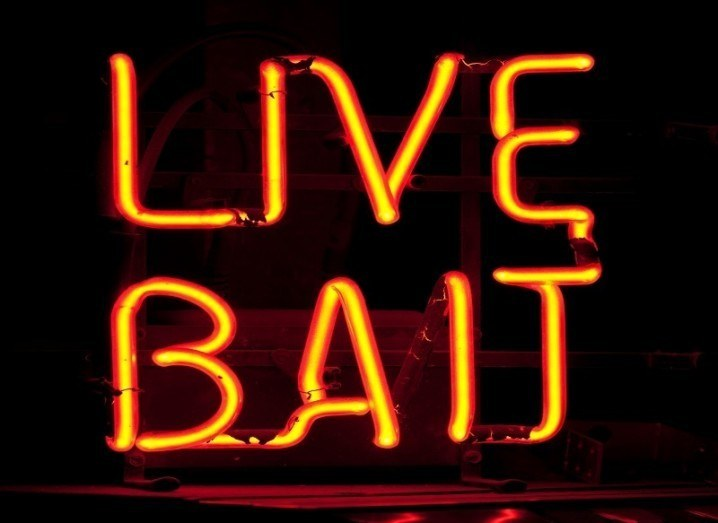 Neon live bait sign