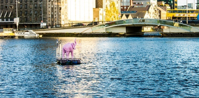 Pink elephant for 2016 BTYSTE