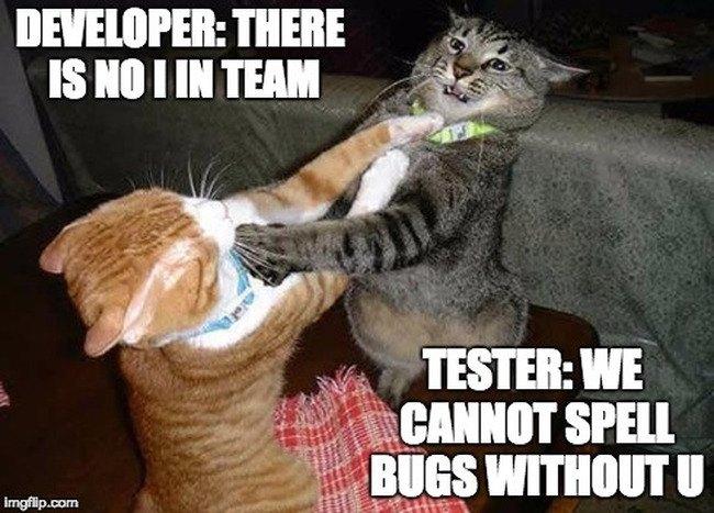 QA Tester memes