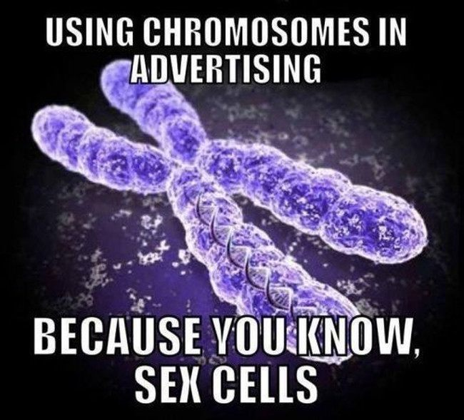 Biologist meme. obligatory sex reference. Sex cells!