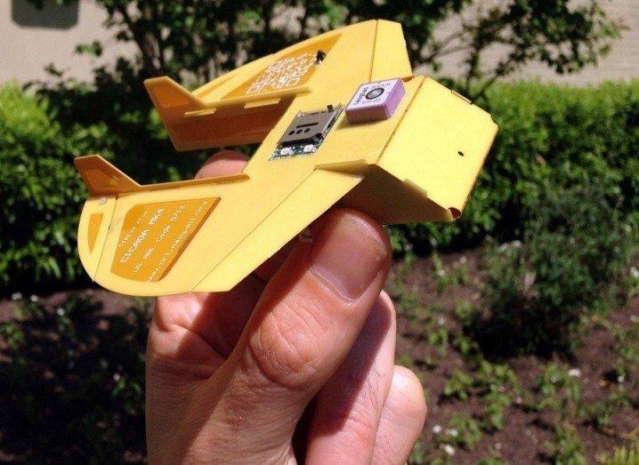Cicada drone