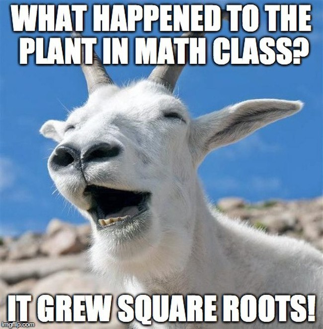 10 things only a mathematician will understand: Funny maths memes