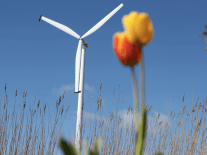 AIB and Enercon sign deal to help wind energy start-ups take off