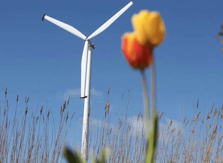 Wind turbine with tulip