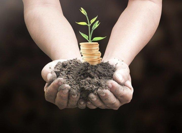 seed-money-shutterstock