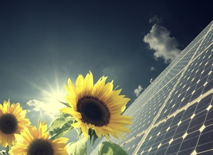 sustainable-business-shutterstock