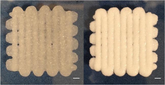 Bio-printed material