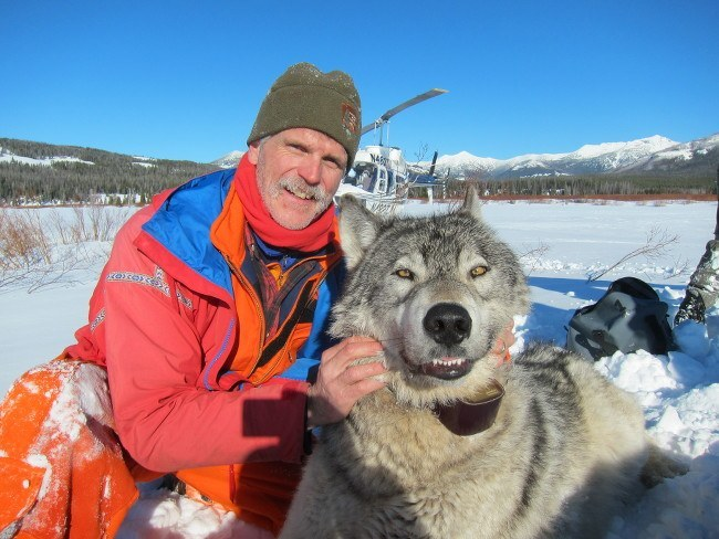 Doug Smith, senior wildlife biologist at Yellowstone National Park | Yellowstone wolves
