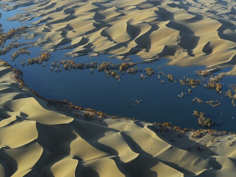 Deserts are a giant carbon sink sucking up 30pc of world's CO2