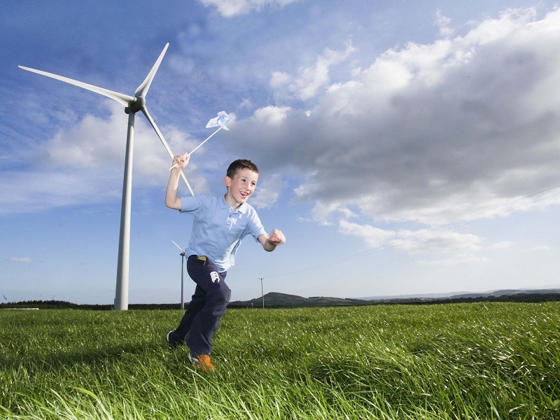 25pc of Irish energy demand met by wind in first half of 2015