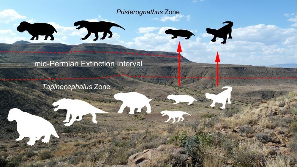 Guadalupian extinction