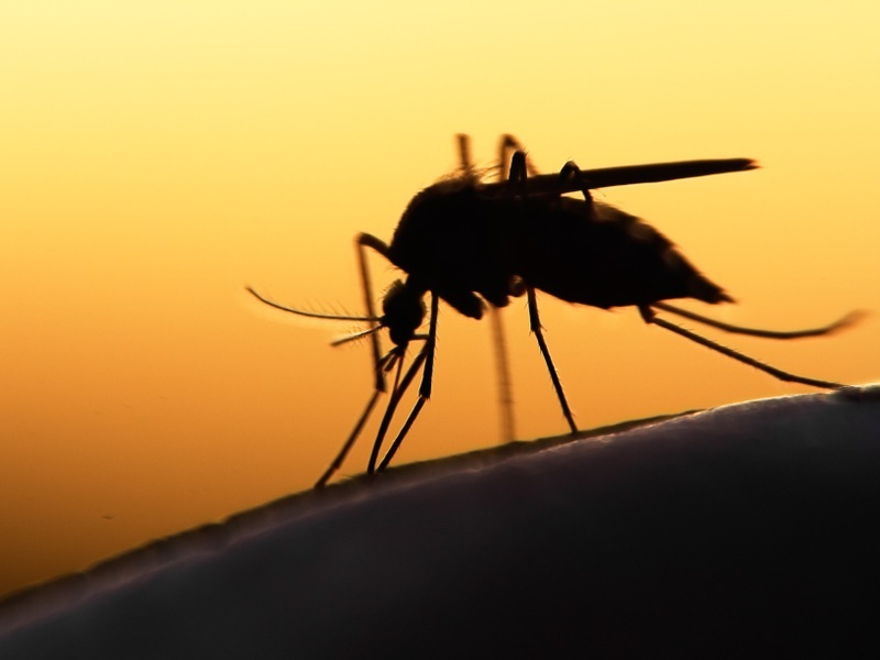 World's first malaria vaccine close to full approval